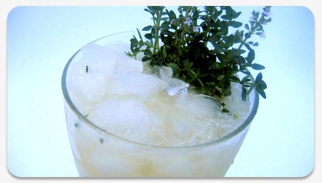 Original Herb and Bitters Cocktails | Kaiser Penguin